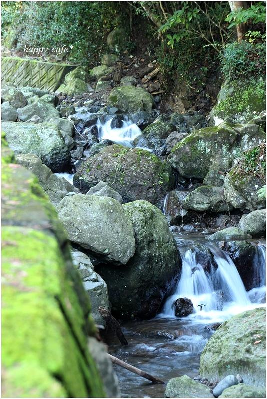 秋の山散歩♪_a0167759_2283721.jpg