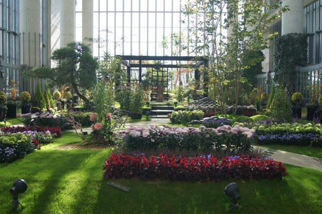 奇跡の星の植物館~グリーンアート_e0181373_20511164.jpg
