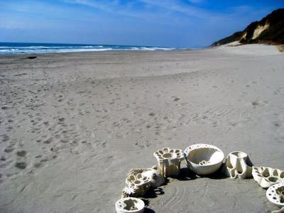 表浜砂のcup&saucer_b0087077_1954478.jpg