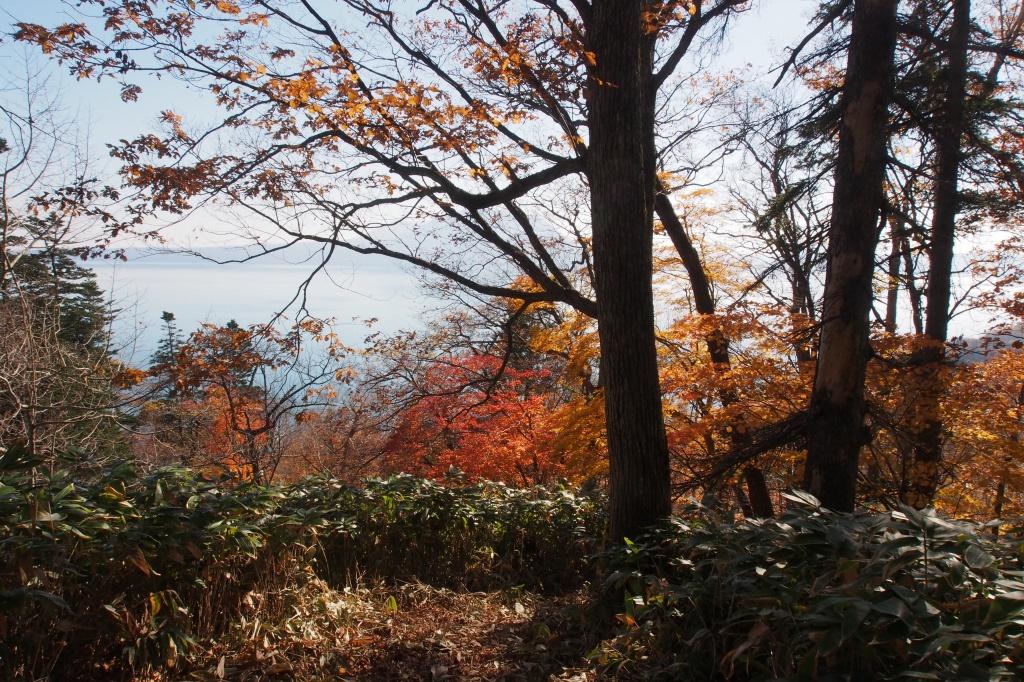イチャンコッペ山、10月23日_f0138096_16124059.jpg