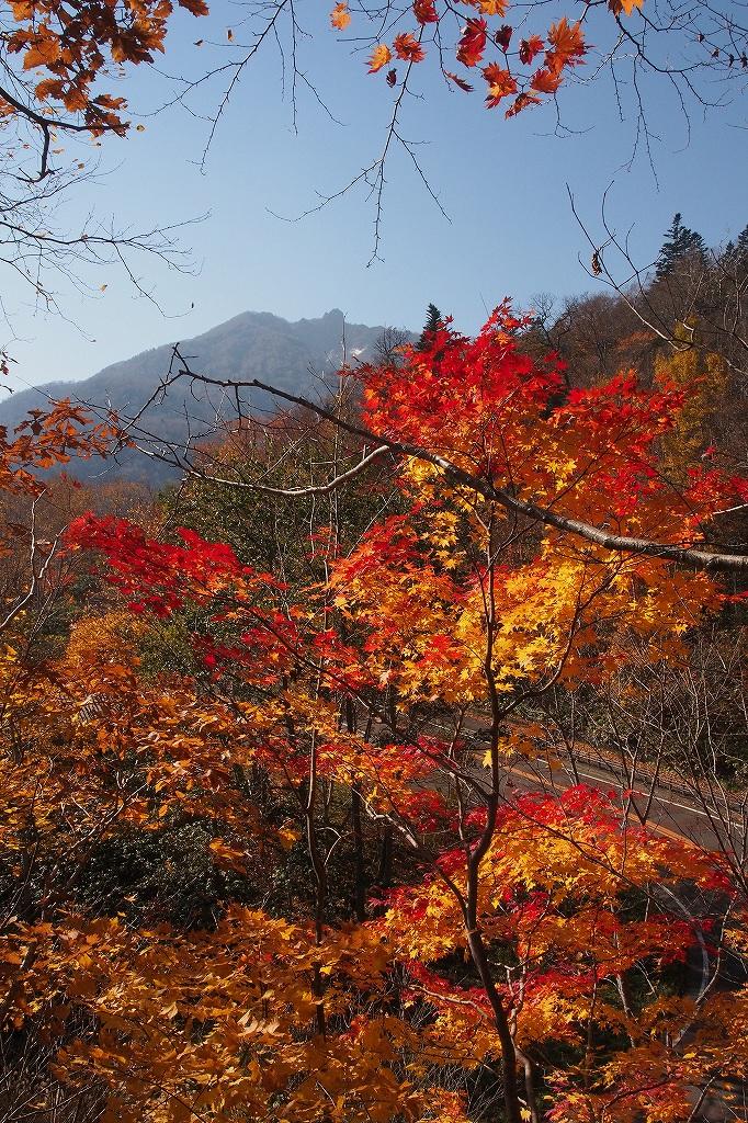 イチャンコッペ山、10月23日_f0138096_1694211.jpg