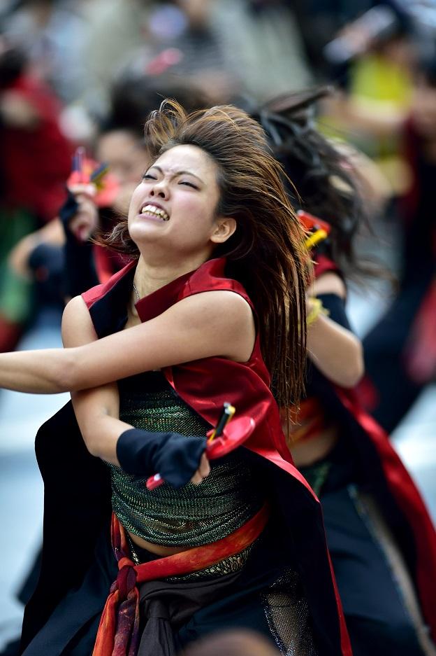 東京よさこい「Team Ryu」_f0184198_12273799.jpg