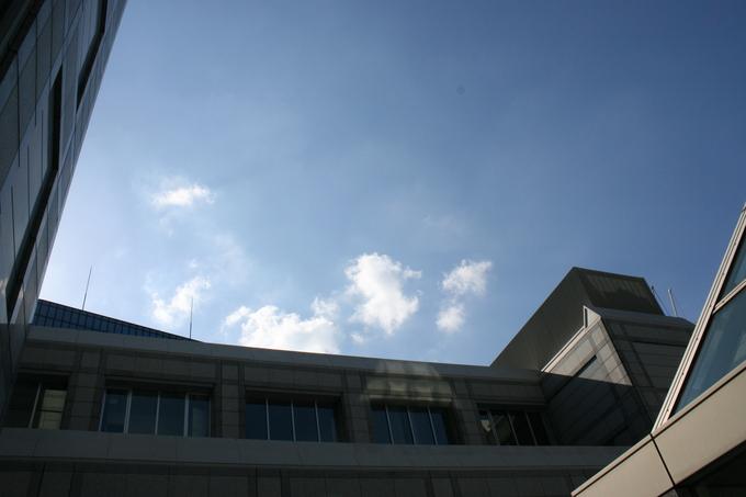 10/19 青山での里親会_f0242002_148343.jpg