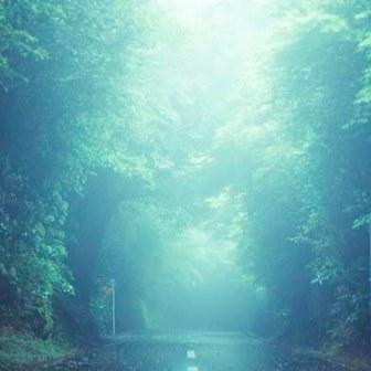 14/11/19(水)-11/24(月) 長尾真志 第3回写真展 『ISOLATED』_e0091712_011558.jpg