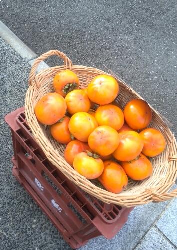 柿のつづき!?_f0340942_1354348.jpg