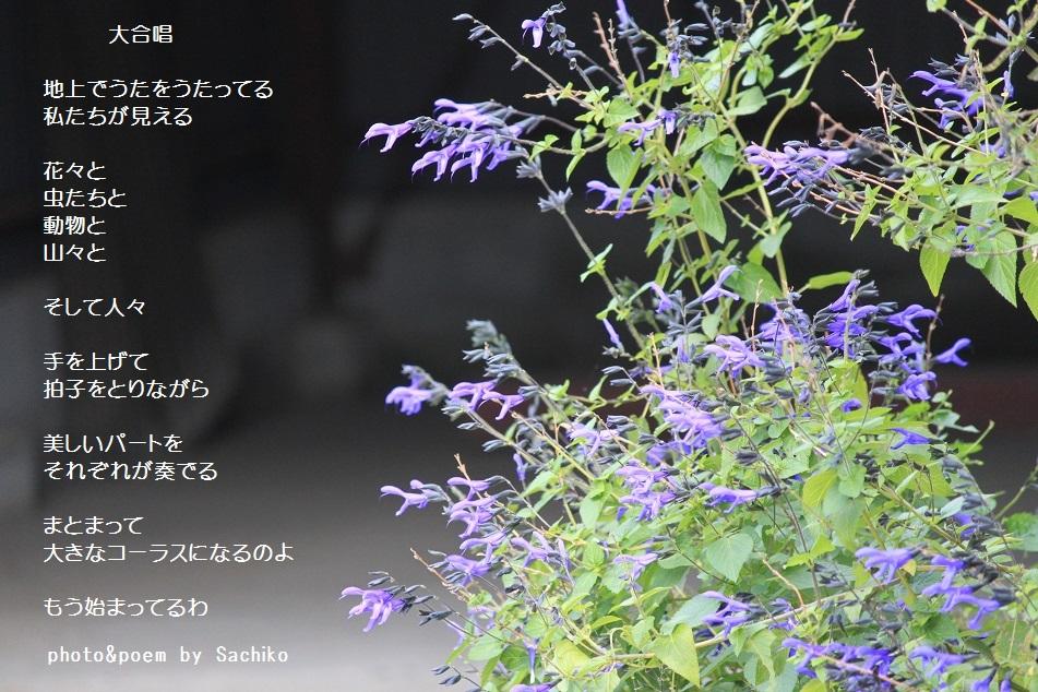 f0351844_14104811.jpg