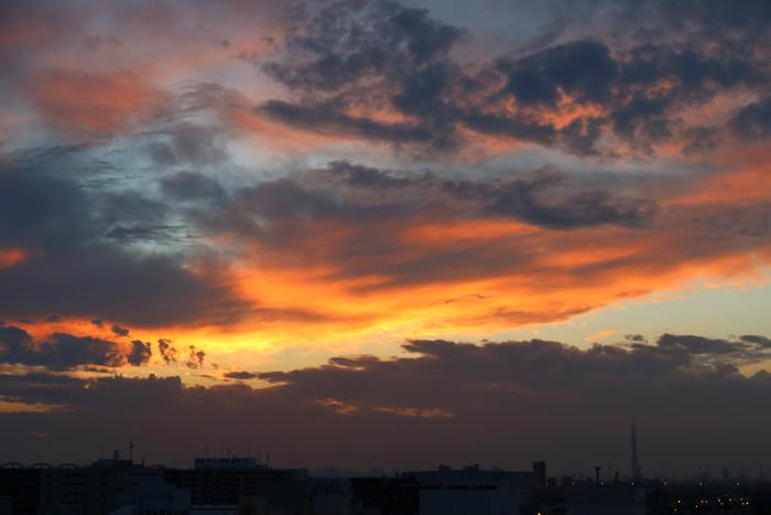 本日の夕焼け、ほんのり焼けました~♪_d0152261_2105352.jpg