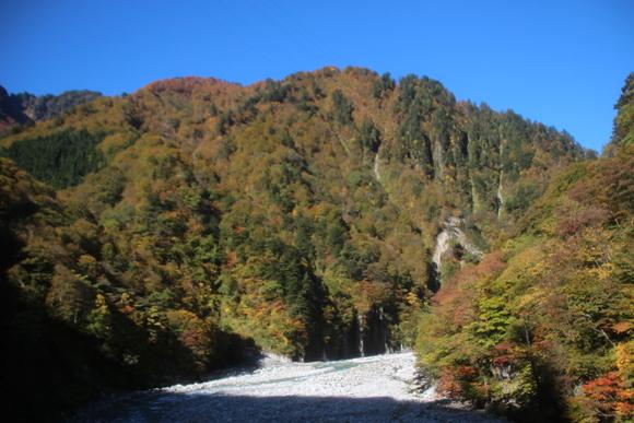SKY141026 黒部川の清流が織り成す美しいコントラストの紅葉・黄葉綺麗。_d0288367_17233965.jpg