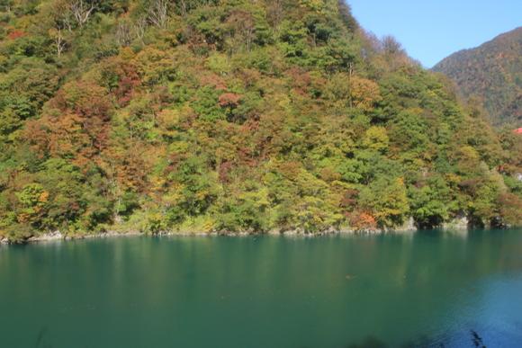 SKY141026 黒部川の清流が織り成す美しいコントラストの紅葉・黄葉綺麗。_d0288367_17343316.jpg
