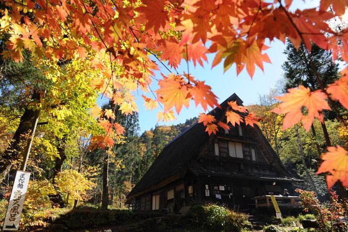 紅葉の奥飛騨温泉郷へ_a0049296_18194952.jpg