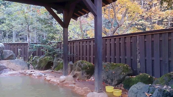紅葉の奥飛騨温泉郷へ_a0049296_19133671.jpg