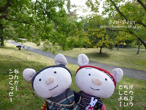 初秋の昭和記念公園_d0128697_19572422.jpg