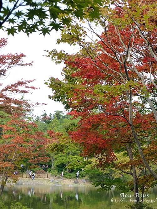 初秋の昭和記念公園_d0128697_19575427.jpg