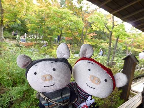 初秋の昭和記念公園_d0128697_19581010.jpg