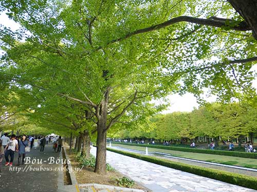 初秋の昭和記念公園_d0128697_19581646.jpg