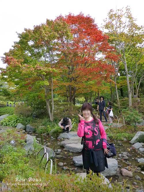 初秋の昭和記念公園_d0128697_1958537.jpg