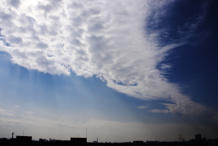 まだら雲 (層積雲)_b0268615_16301396.jpg