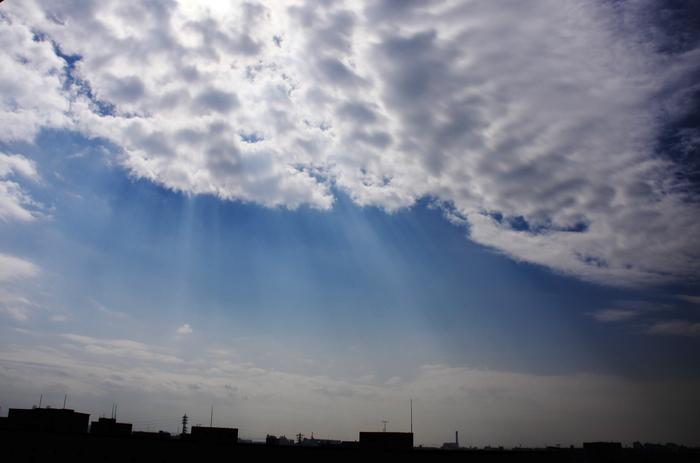 まだら雲 (層積雲)_b0268615_16304430.jpg