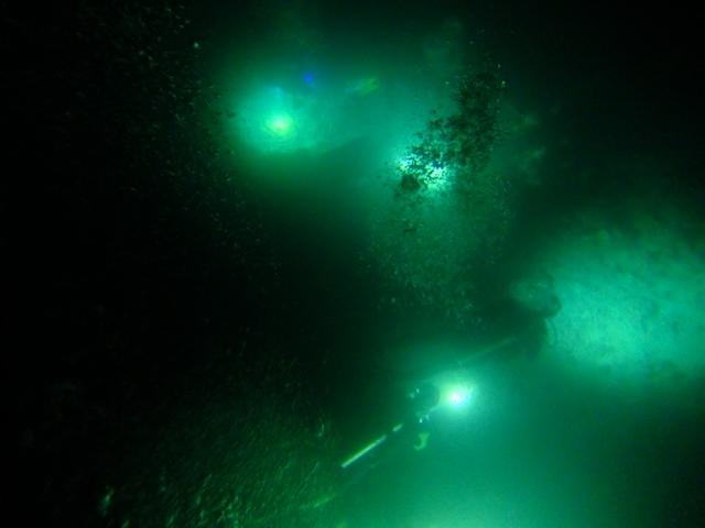Sari Diveのナイトダイビング_c0211615_1051266.jpg