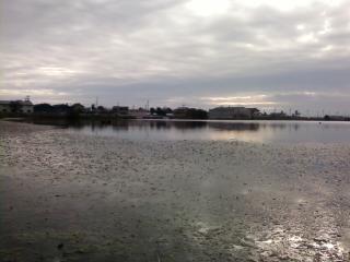 2014年 TBCスキルアップミーティング & バス釣り大会第7戦_a0153216_2371862.jpg