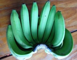 バナナでも食べますか…_a0043520_19341828.jpg
