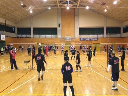 『第12回 日和田ソフトバレーボールフェスティバル』_f0259324_20493363.jpg