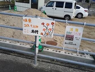 浅海原のコスモス畑(詳細編)_c0034228_21104233.jpg