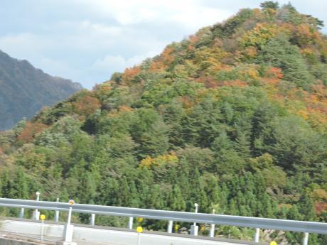 北軽井沢の紅葉_c0341450_1710484.jpg