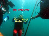 b0174352_14125431.jpg