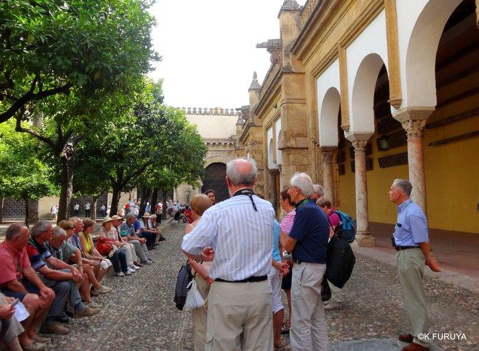 スペイン旅行記 11 コルドバ_a0092659_2001135.jpg