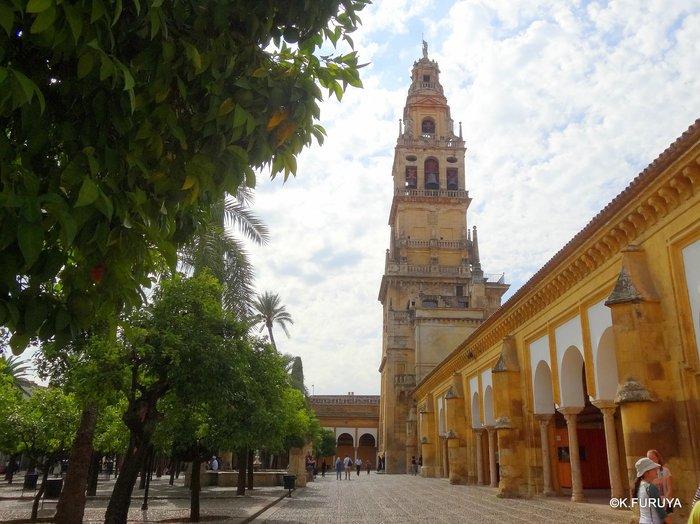 スペイン旅行記 11 コルドバ_a0092659_2254579.jpg