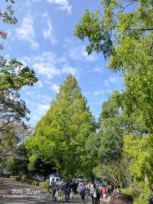 初秋の昭和記念公園その2_d0128697_16571397.jpg