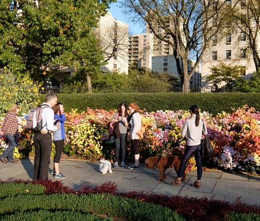 なぜか今、お花満開のセントラルパーク内にあるフランス式庭園(Conservatory Gardenの一部)_b0007805_3114113.jpg