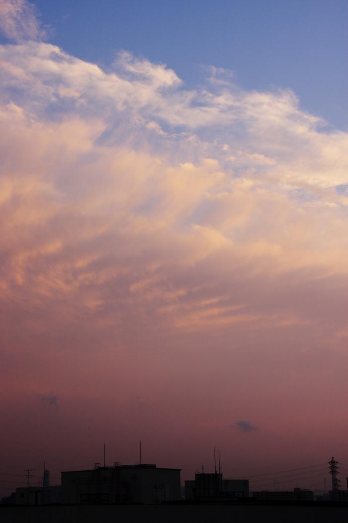 波状雲 (高積雲)_b0268615_16104619.jpg