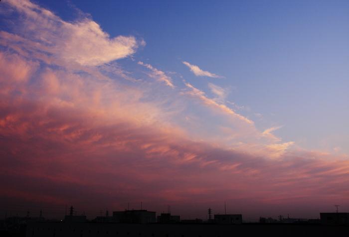 波状雲 (高積雲)_b0268615_1612497.jpg