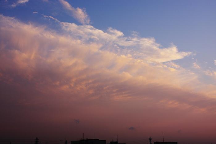 波状雲 (高積雲)_b0268615_1652545.jpg