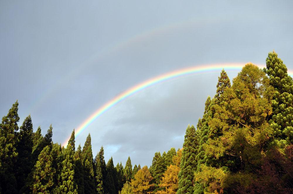 今日も虹! 昨日も虹!_e0162117_18144730.jpg