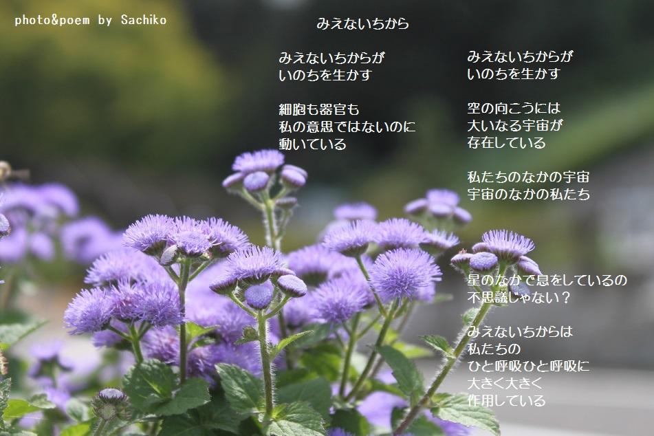 f0351844_09273530.jpg