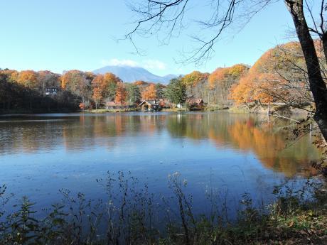 北軽井沢の秋を連れて帰ってきました。_c0341450_1150998.jpg