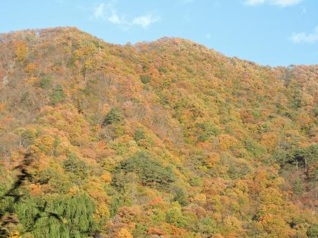 六合村からネッシーがいそうな野反湖へ_c0341450_1811789.jpg