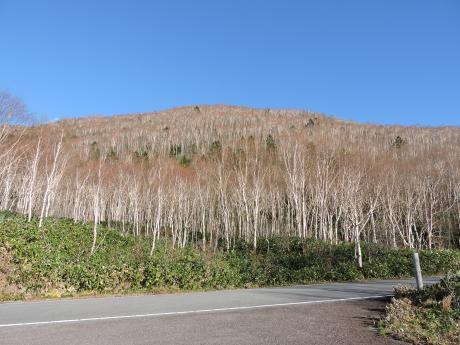 六合村からネッシーがいそうな野反湖へ_c0341450_18214014.jpg