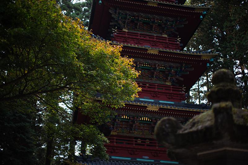 2014.10.26  日光社寺 紅葉_b0229469_10334752.jpg