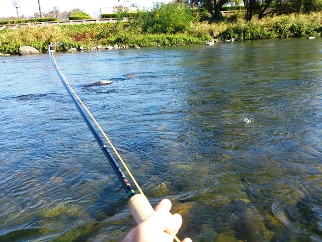 利根川冬季釣り場_c0157482_11231400.jpg