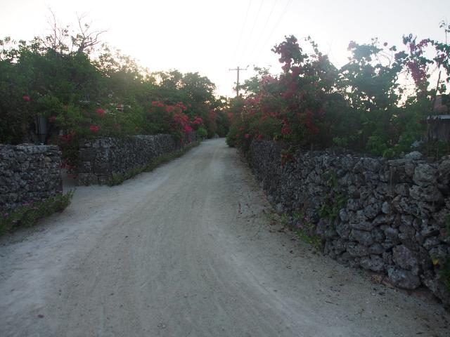 八重山諸島の旅 竹富島⑦_f0024992_10271250.jpg