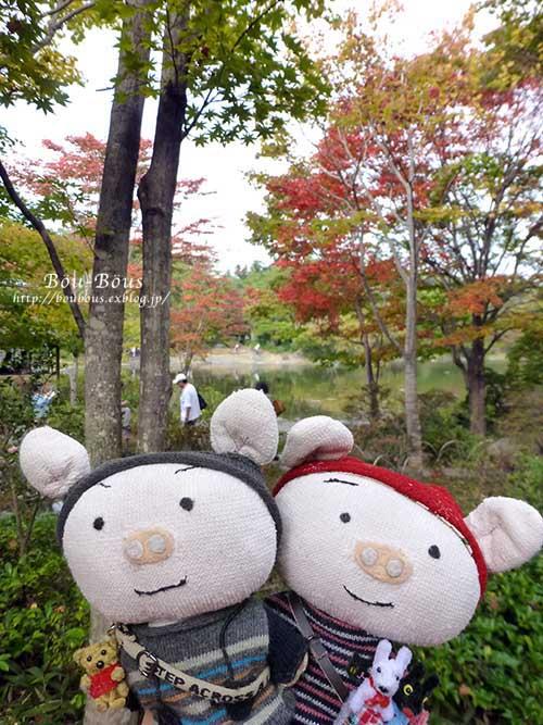 初秋の昭和記念公園その3(ラスト)_d0128697_0382040.jpg