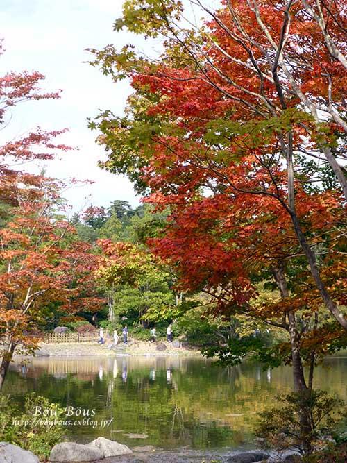 初秋の昭和記念公園その3(ラスト)_d0128697_038262.jpg