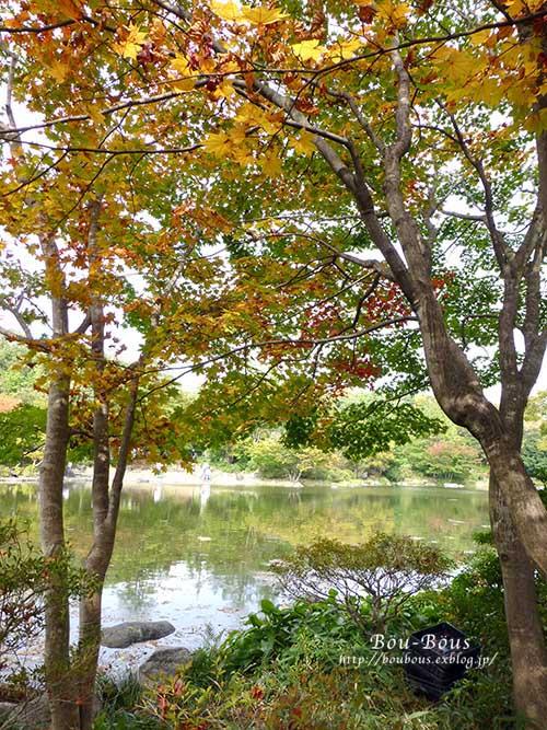 初秋の昭和記念公園その3(ラスト)_d0128697_0385387.jpg