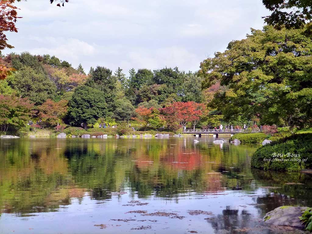 初秋の昭和記念公園その3(ラスト)_d0128697_0391696.jpg