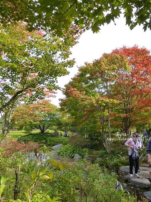 初秋の昭和記念公園その3(ラスト)_d0128697_0392421.jpg