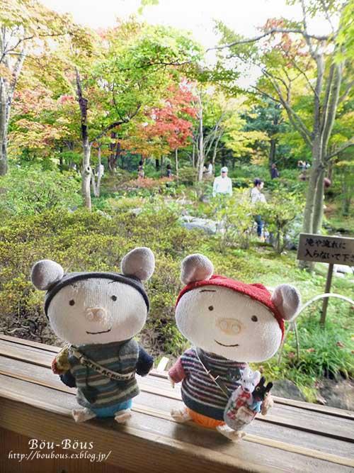 初秋の昭和記念公園その3(ラスト)_d0128697_0393313.jpg